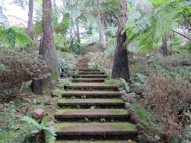 mystické schody